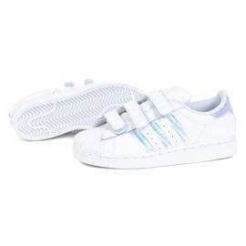 Tênis Adidas Superstar Cf C FV3655 branco preto