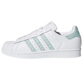 Branco Sapatilhas Adidas Originals Superstar na CG5461