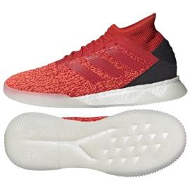 Sapatos de interior adidas Predator 19.1 Tr M D98057