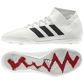 Sapatos de interior adidas Nemeziz 18.3 In M D97989