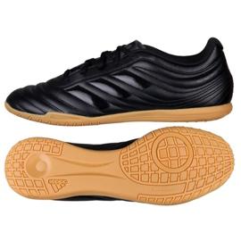 Sapatos de interior adidas Copa 19.4 In M D98074