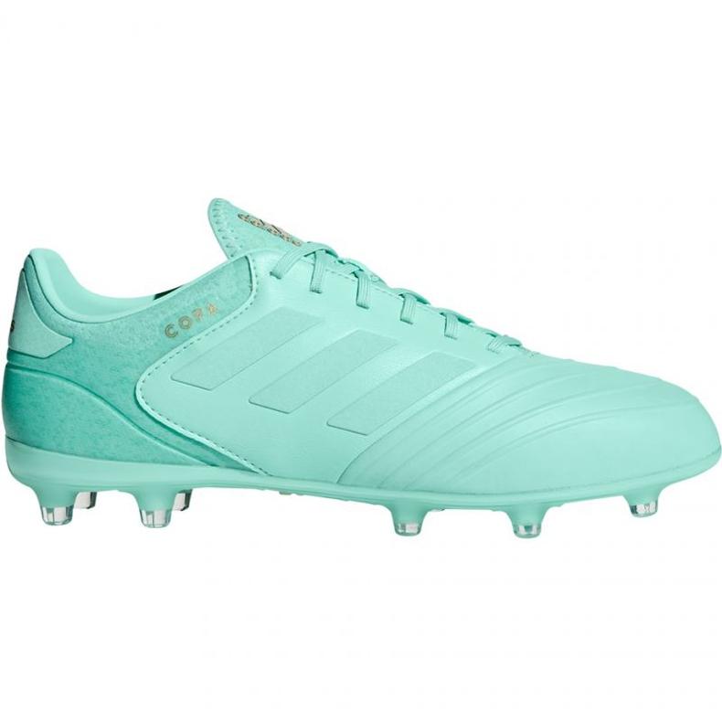 Sapatos de futebol adidas Copa 18.2 FG M DB2446 azul