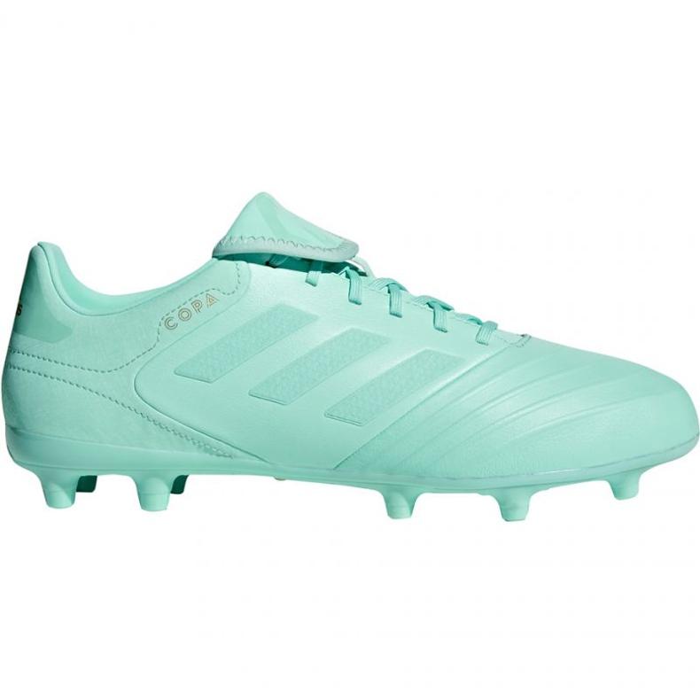 Sapatos de futebol adidas Copa 18.3 Fg M DB2462 azul azul