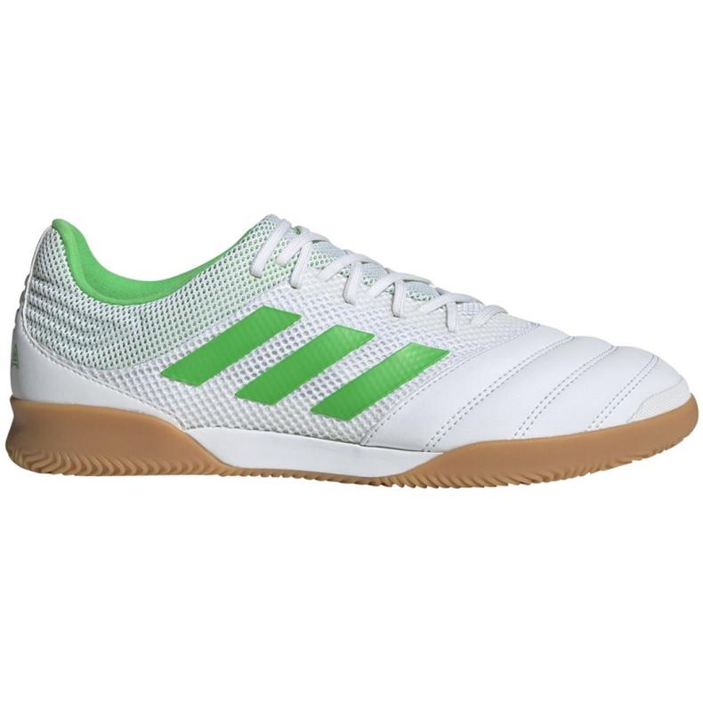 Sapatos de interior adidas Copa 19.3 Na Sala M BC0559 branco branco