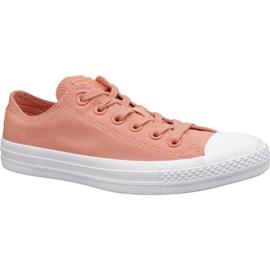Laranja Sapatos Converse C. Taylor All Star W 163307C
