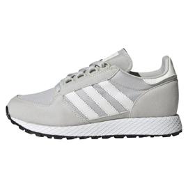 Cinza Sapatos Adidas Originals Forest Grove Jr EE6565