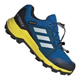 Azul Sapatos Adidas Terrex Gtx Jr BC0599