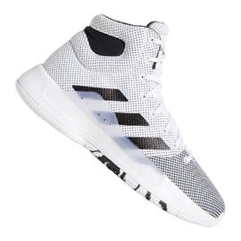 Sapatilhas Adidas Pro Bounce Madness 2019 M BB9235