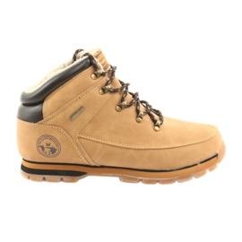 American Club ES40 sapatos de camelo com cordões