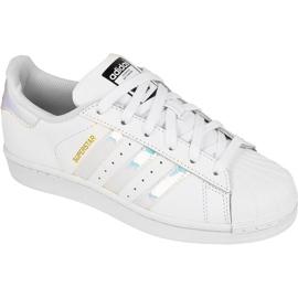Sapatos Adidas Originals Superstar Jr AQ6278 branco