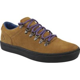 Sapatos Timberland Adv 2.0 Cupsole Alpine Ox M A1SHV marrom