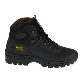 Sapatos Grisport M 10242D26G marrom