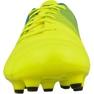 Chuteiras de futebol Puma evoPOWER 4.3 Fg M 10353601 amarelo amarelo 2