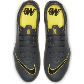 Botas de futebol Nike Mercurial Vapor 12 Pro Fg M AH7382-070 cinza cinza / prata 2