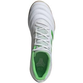 Sapatos de interior adidas Copa 19.3 Na Sala M BC0559 branco branco 1