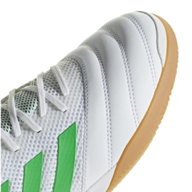 Sapatos de interior adidas Copa 19.3 Na Sala M BC0559 branco branco 3