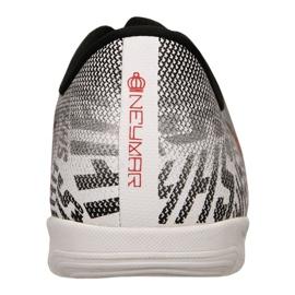Sapatos de interior Nike Jr Vapor 12 Academia Gs Njr Ic Jr AO9474-170 cinza cinza / prata 4