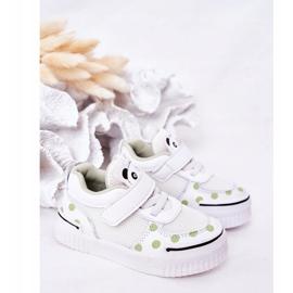 Apawwa Calçados Esportivos Infantis Com Panda Branco e Verde Chico 5